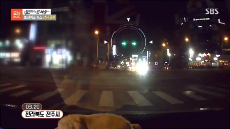 교통사고 피해자 전문 변호사 상시유턴 불법유턴 신호위반 2.jpg
